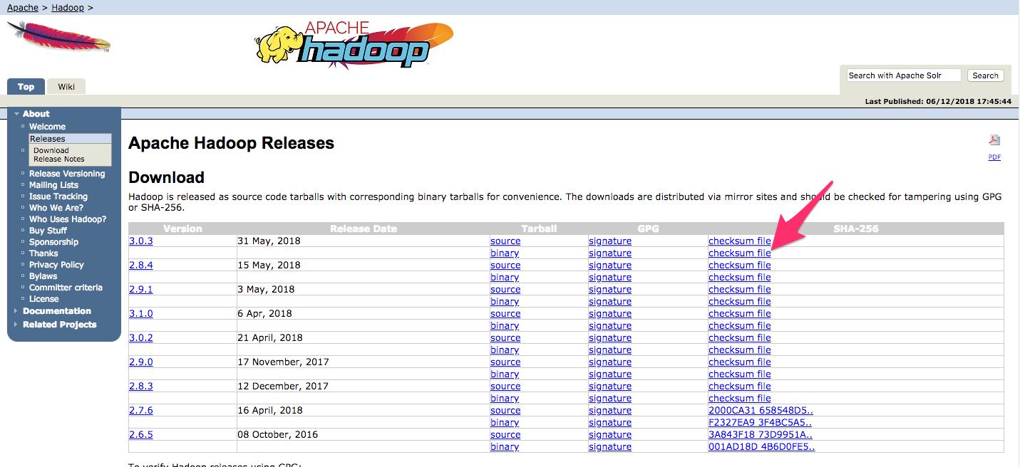 Screenshot highlighting the .mds file