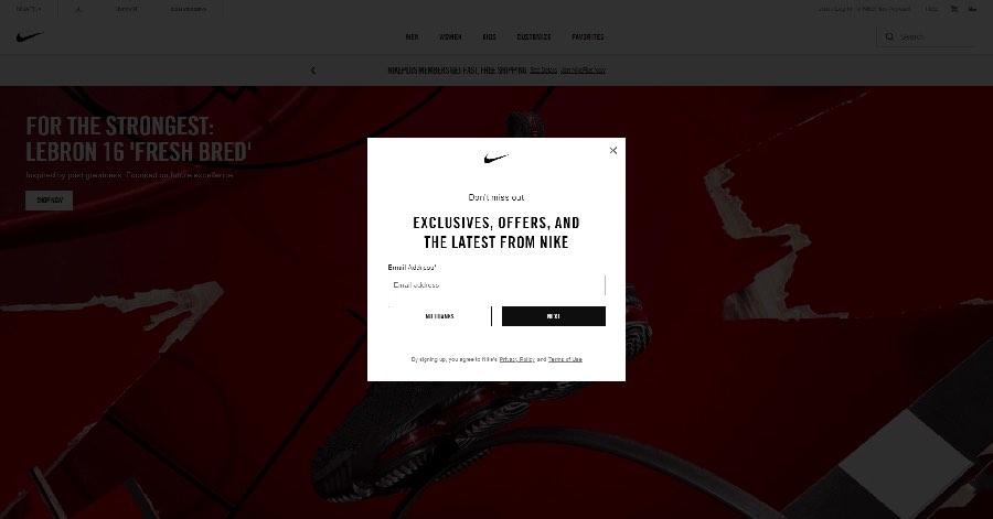 An example of a website pop-up.