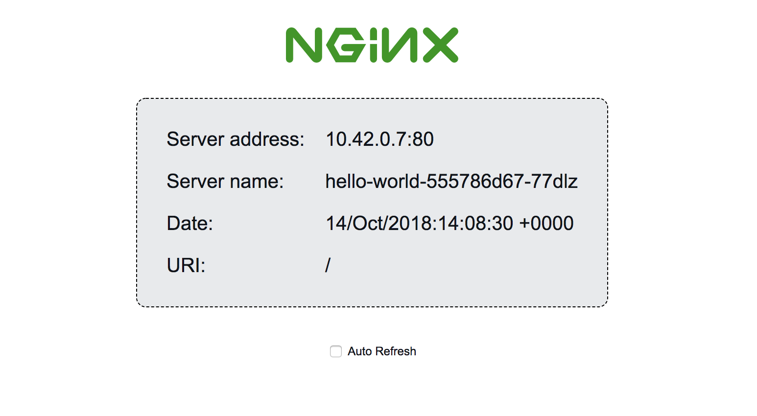 Server address, Server name, and other output from the running NGINX container