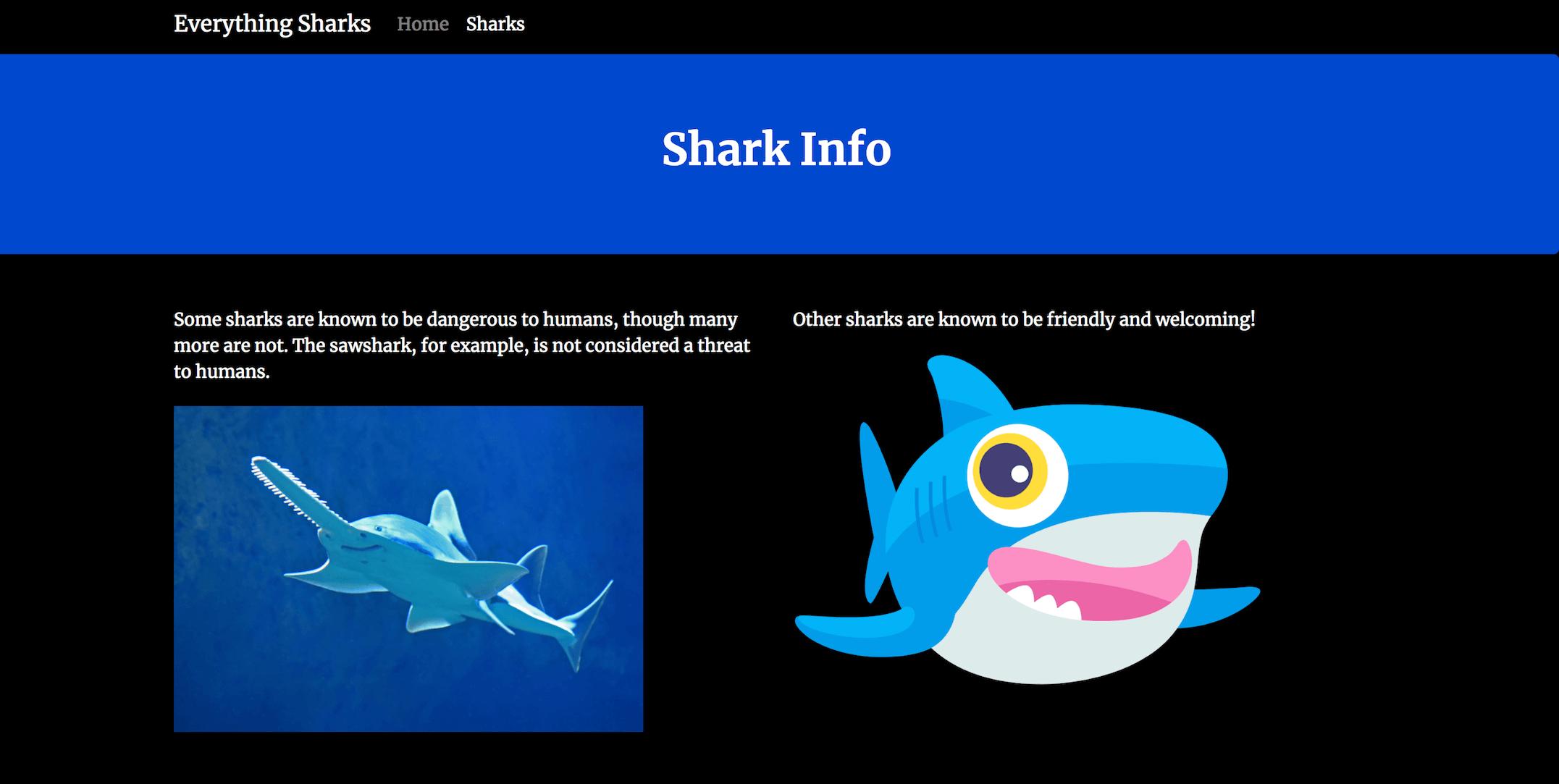 Страница информации об акулах