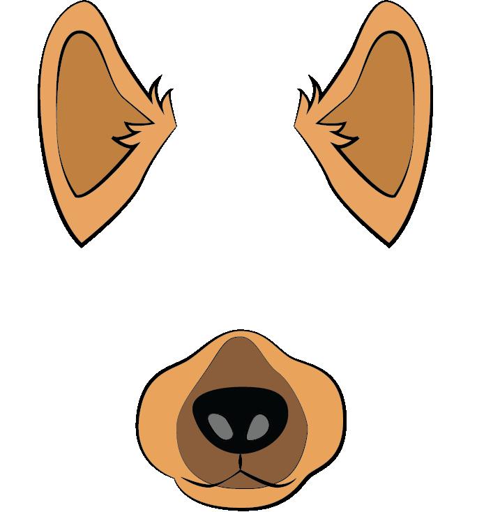 Dalmation mask