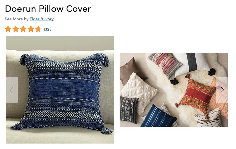 A product photo of a throw pillow from Wayfair.