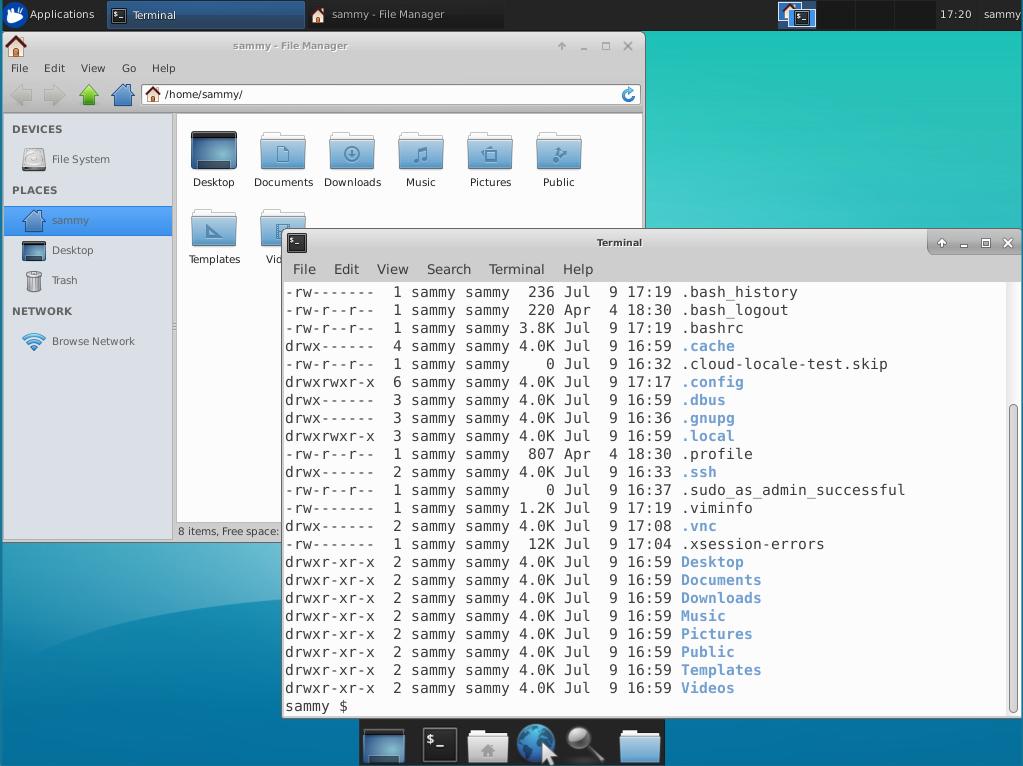 Archivos a través de la conexión de VNC a Ubuntu 18.04