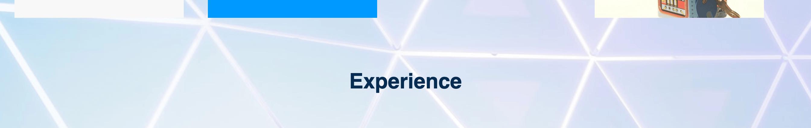 "Screenshot of ""Experience"
