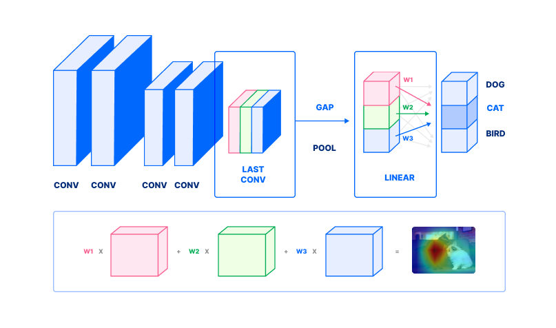 Diagram of how class activation maps are computed from an image classification neural network.