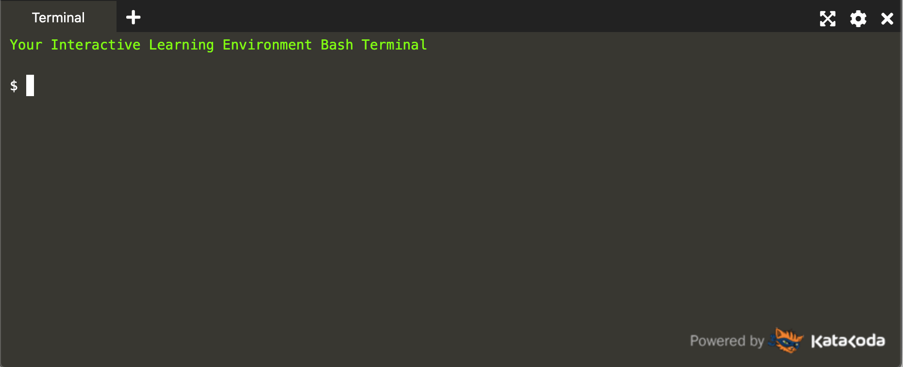 Screenshot of the Katacoda Terminal Environment