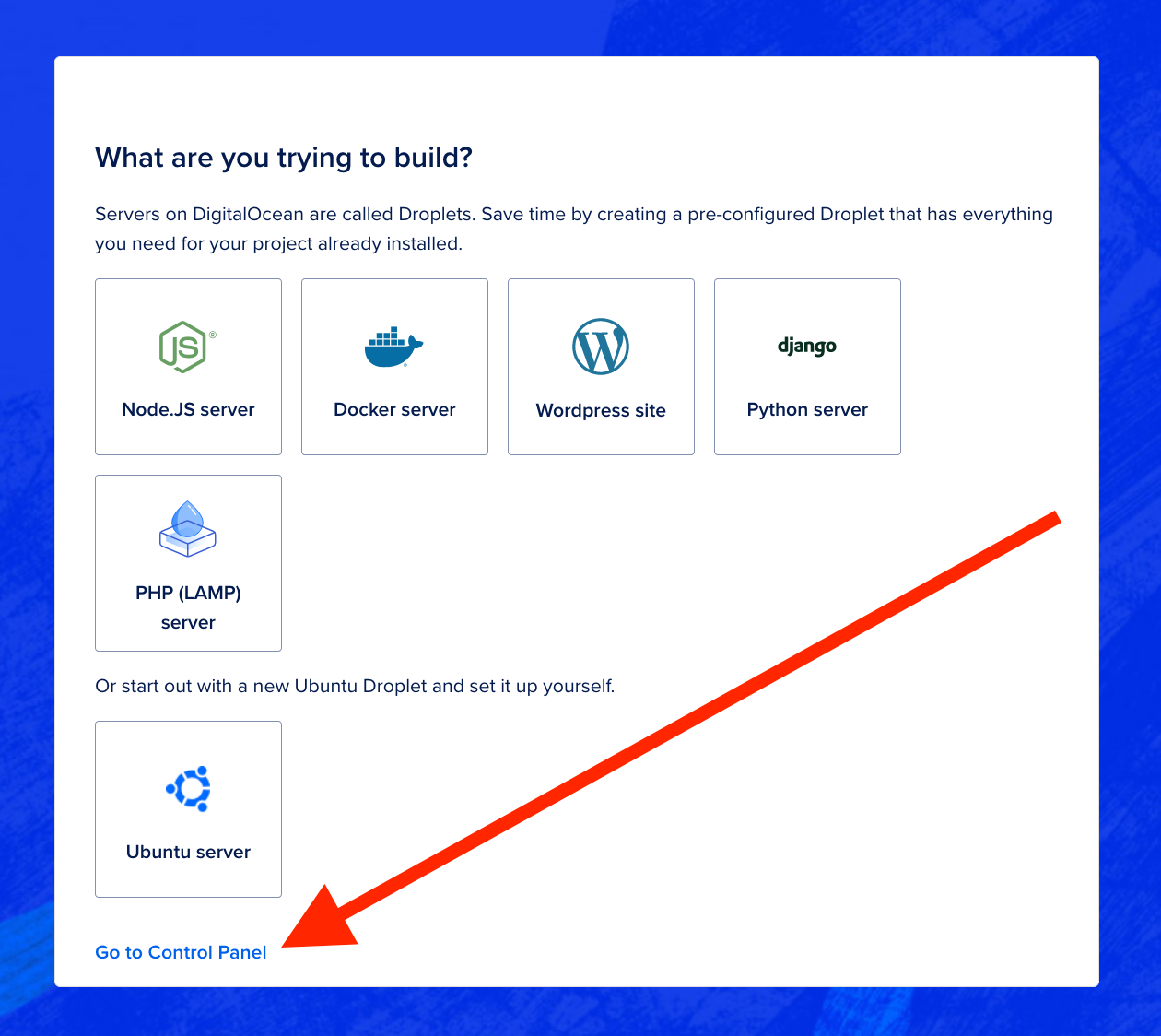Webpage displaying Droplet options