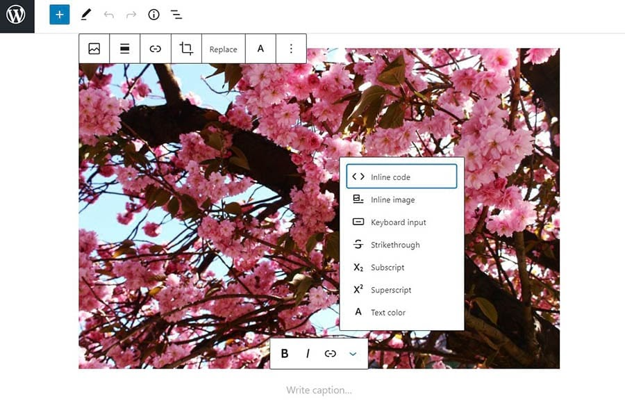 Writing an image caption in WordPress.