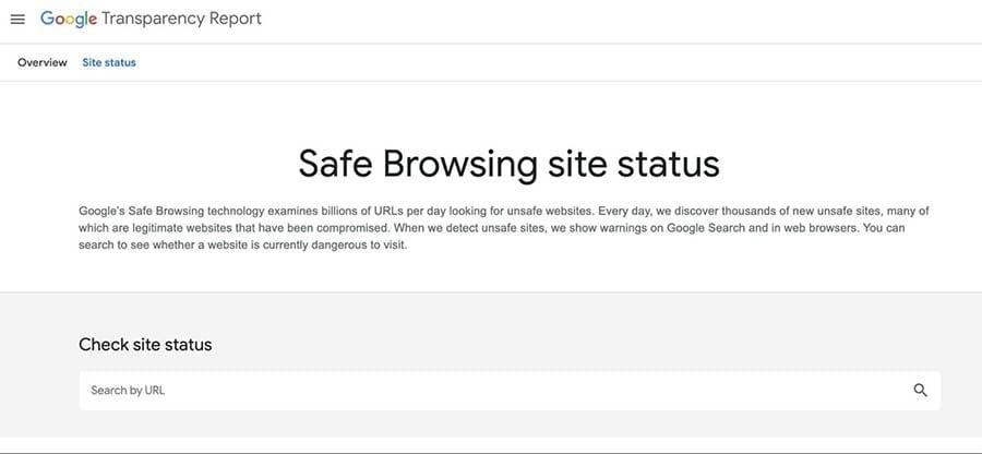 Google's Site Status diagnostic tool.