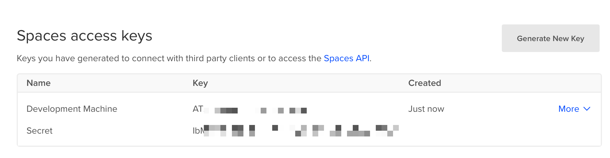 A screenshot showing a Spaces access key