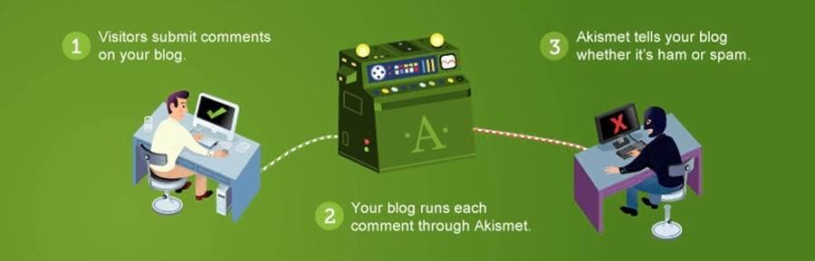 The Akismet Anti-Spam plugin.